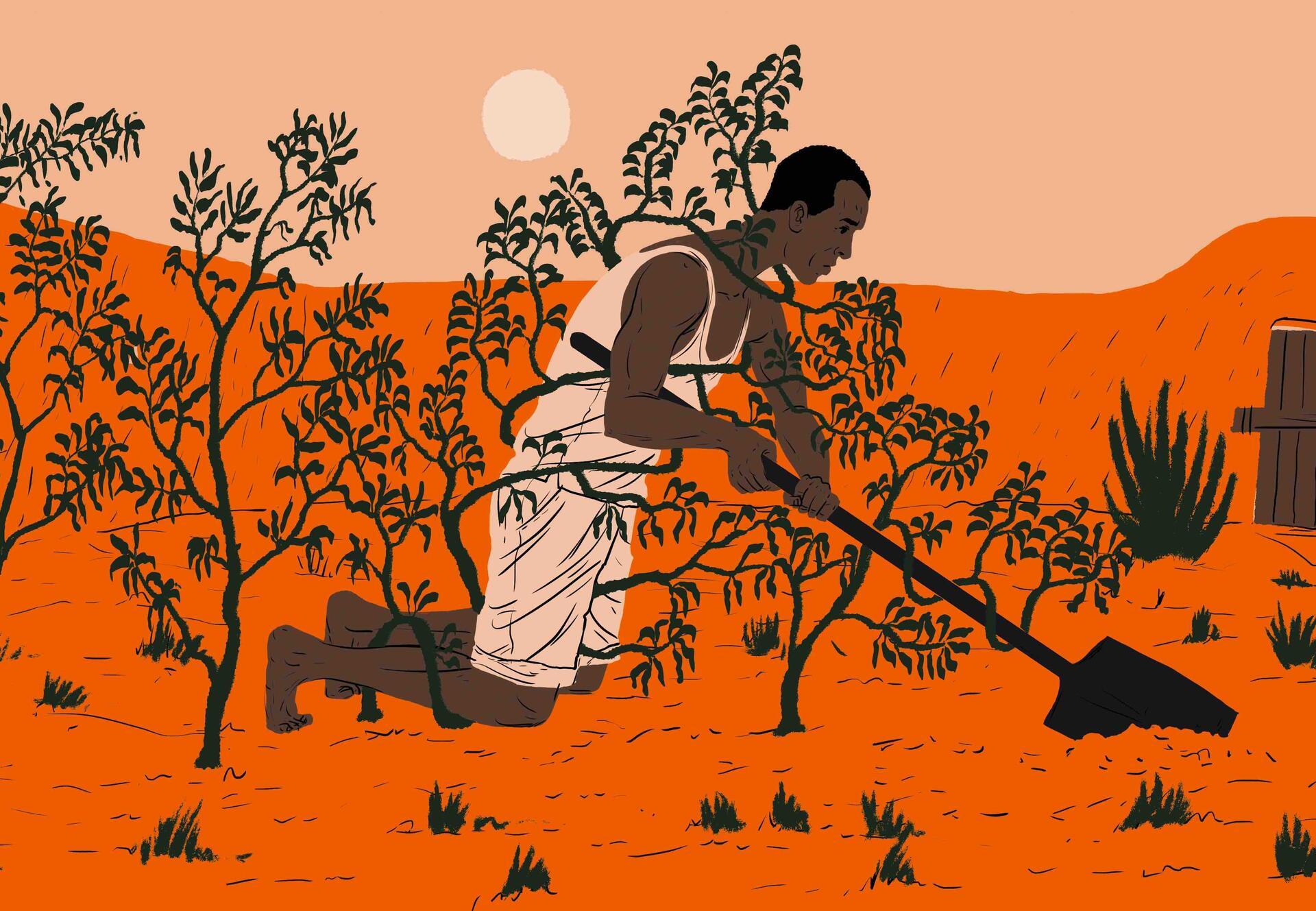 Nigerianische frauen, die einen mann suchen, um sie zu imprägnieren
